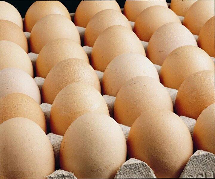 Beyaz ve kahverengi yumurta arasında besleyicilik açısından fark yoktur.