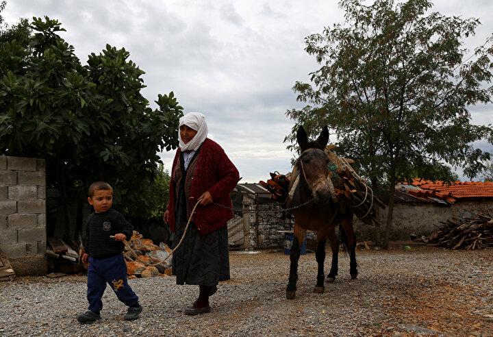 İkizce Mahallesinde yalnız yaşayan 70 yaşındaki 5 çocuk annesi Namalan, 20 yıl önce eşini kaybetti. Çocuklarının yardım teklifini kabul etmeyen Namalan, boş oturmamak ve kimseye muhtaç olmamak için dağdan odun toplamaya karar verdi.