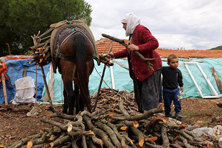 Muğlanın Menteşe ilçesinde yaşayan Fatma Namalan, dağdan topladıktan sonra can yoldaşım dediği Ceylan isimli katırına yüklediği odunları satarak geçimini sağlıyor.
