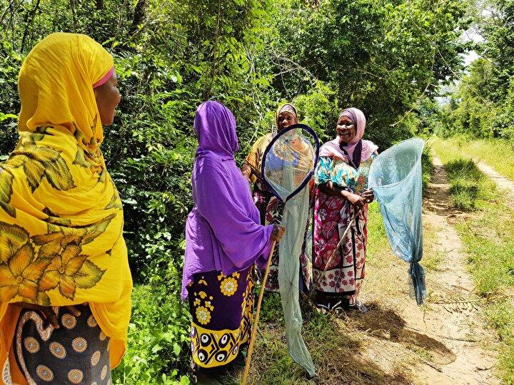 BMnin Ormansızlaşma ve Orman Parçalanmasından Kaynaklanan Salınımların Azaltılması (REDD) ekibinden Griet Ingrid Dierckxsens, projenin yürütülen politikaların çok güzel bir örneği olduğunu söyledi.Dierckxsens, Daha önce odun kömürü satarak yaptıkları işten daha fazla kazanıyorlar. Şu an projeden elde edilen yıllık gelir 1,9 milyon dolar. dedi.