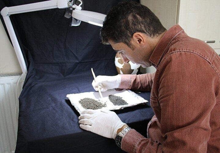 Bingöl'ün ilk sistemli arkeolojik kazı çalışmaları sırasında çömleklerin içinde karbonize olmuş şekilde hububat kalıntıları bulunmuştu. Bulunan hububat kalıntıları TUBİTAK MAM laboratuvarlarında incelendi. Yapılan incelemede buğday tanelerinin 4 bin 500 yılık geçmişe sahip olduğu ortaya çıktı.