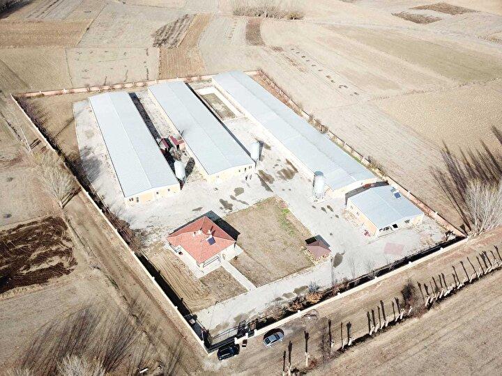 Karagöz, birikiminin yanı sıra TKDKden aldığı hibe desteğiyle Tınaztepe beldesinde 50 bin et tavuğu kapasiteli çiftlik kurdu.