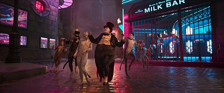 Kötü kedi Macavityyi ise Idris Elba canlandırıyor. Filmin kadrosunda Taylor Swift, Rebecca Wilson, Jennifer Hudson gibi birçok yıldız isim yer alıyor.
