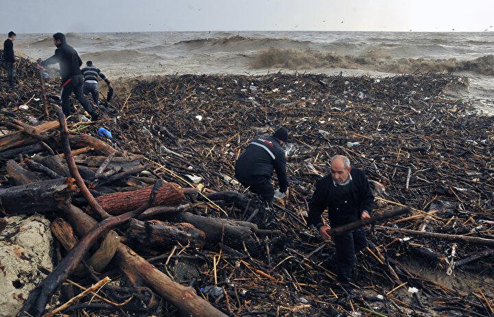 Vatandaşlar da bu odunları yakacak olarak toplamak için sahile akın etti.