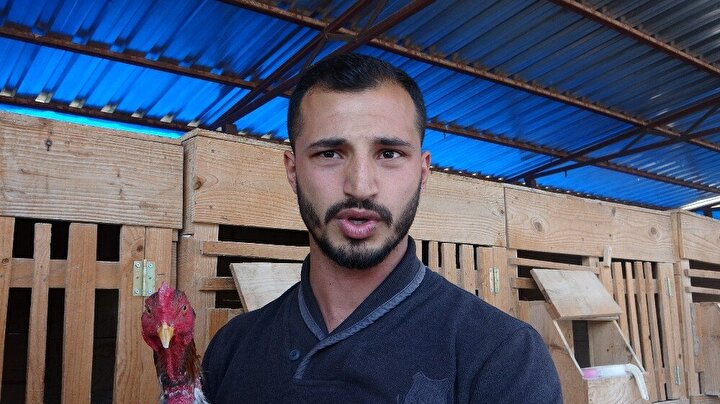 Türkiyede çapında düzenlenen horoz güzellik yarışmasında 5 yıl üst üste ülke şampiyonu olan Samsunlu isimli horoz, 55 bin tel teklif edilmesine rağmen üretim için satışa sunulmuyor.