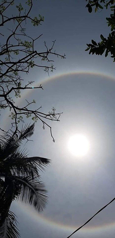 Ay ve güneşin tutulmasını gören ancak böyle bir şey daha önce görmeyen vatandaşlar evlerinden çıkarak ilginç güneşini kadrajladı. Vatandaşların çektiği fotoğraf ve görüntüler sosyal medyada paylaşınca kısa bir sürede ülke gündemine oturdu.