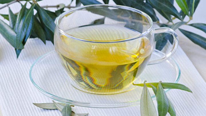 Vücudun bağışıklık sistemini güçlendirip hastalıklara karşı dirençli olmasını sağlayan zeytin ağacı çayının fayları ise şöyle: