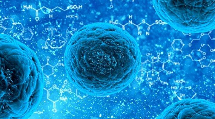 Çinden dünyaya yayılan ve binlerce kişinin hayatını kaybettiği koronavirüsünde vaka sayısı ve can kaybı artıyor.
