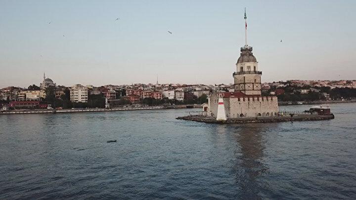 Koronavirüsle mücadele kapsamında alınan sokağa çıkma kısıtlaması kararı İstanbul Boğazının sakinleri yunuslara yaradı.
