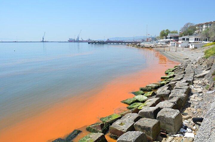 Denizin turuncu renge boyanması kimi vatandaşlar tarafından merak konusu olurken, her yıl bu aylarda denizde planktonların çoğalması nedeniyle turuncu rengin oluştuğu biliniyor. Aynı bölgede geçtiğimiz haftalarda da yoğun şekilde turuncu renk meydana gelmişti.