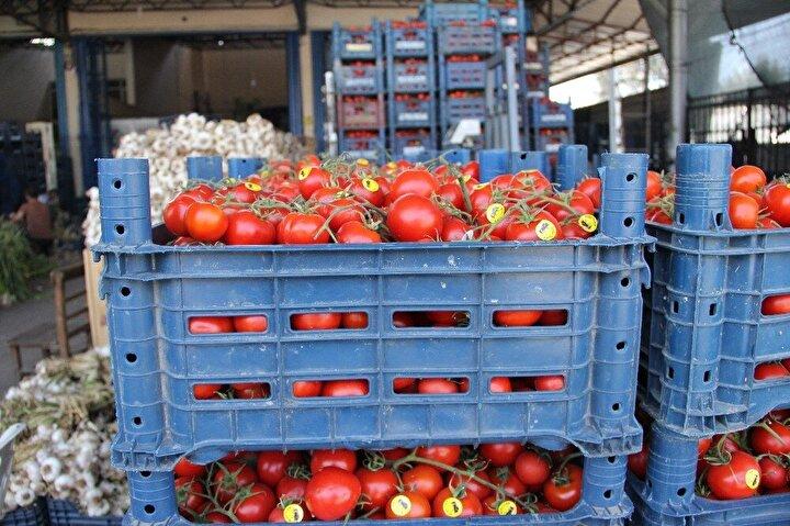 Salgınla mücadele kapsamında alınan önlemler tüm dünyada olduğu gibi Türkiye'de de üreticiyi ve komisyoncuları zorlu bir sürece itti. Koronavirüs (Covid-19) salgını nedeniyle Türkiye'de özellikle sebzede ciddi bir arz fazlası oluşurken, sebze hallerinde fiyatlar dip yaptı. Üretici ile tüketici arasındaki en önemli halka olan hal komisyoncuları, fiyatlar böyle giderse üreticilerin de kendilerinin de bu sürecin altından kalkmalarının mümkün olmayacağını dile getiriyor.
