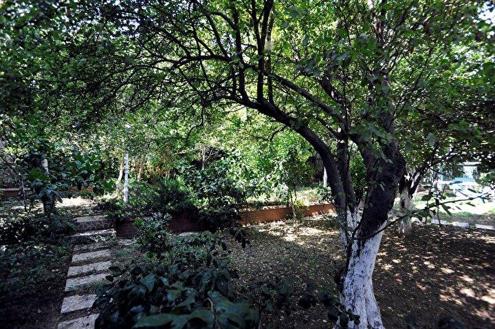 """KÖŞKÜN BAHÇEŞİNDE BİRÇOK MEYVE AĞACI VAR  Başaran, """"Yarı olimpik bir yüzme havuzu, kış bahçesi, çardak, küçük süs havuzu var. Ayrıca, terasa çıkınca boğaz ayaklarınız altına oluyor. Köşk Osmanlı döneminden kalma, Amiral Osman Paşa tarafından yapıldığı için çok önemli bir değer"""" diye konuştu."""