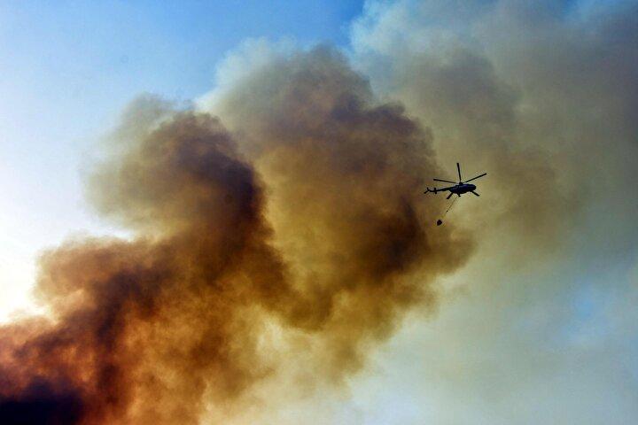 Kaymakam Eren Arslan, Ormanlarımız bizim akciğerimiz. İçerisinde canlı hayat var. İnsanlarımızın zeytinlikleri, tarlaları ve mahsulleri var. Kimsenin zarar görmemesi bizi teselli etti. Ekiplerimiz yangını kontrol altına aldılar.
