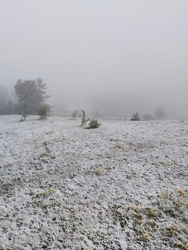 Koronavirüs tedbirleri kapsamında erken kapanan kayak sezonunun ardından İçişleri Bakanlığının yayınladığı genelgeyle tamamen kapatılan Ilgaz Dağı Milli Parkı'nda, kar sürprizi yaşandı.