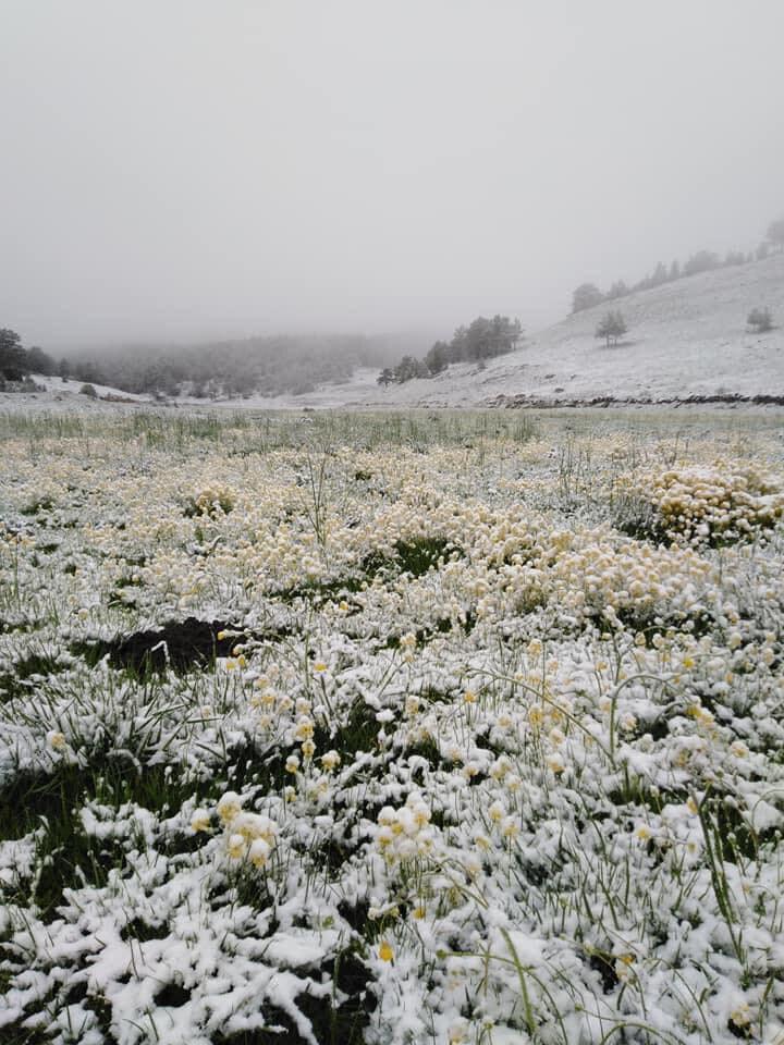 Türkiyenin en önemli kış ve kayak merkezlerinden Uludağda bu yıl sezon, koronavirüs tedbirleri nedeniyle erken kapandı.