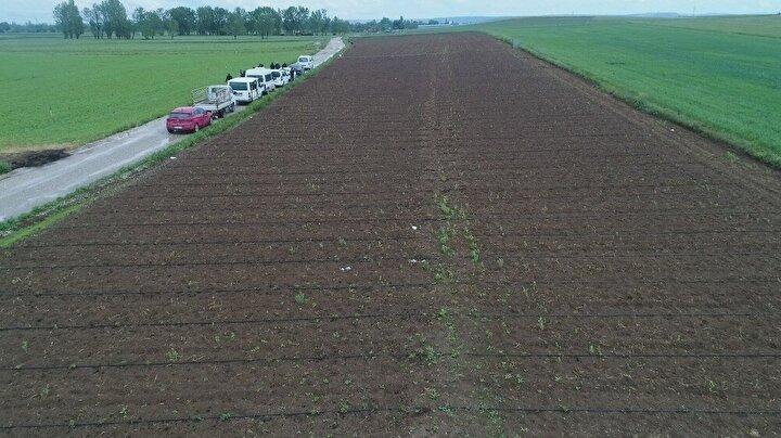 Sezon başında kaliteli ve verimli hasat yapmayı planlayan birçok üretici, havanın soğuk olmasıyla gelişen donun mağduru oldu.