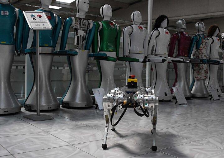 Bu özellikleri ile birlikte robotlarımız insanların erişiminde zorluk olan madenlerde, arazi şartlarında ve arama kurtarma çalışmalarında günümüzde pandemiden dolayı, insanların bulunmasının tehlikeli olan bölgelerde birçok görevi yerine getirmek için tasarlandı ve üretildi. Çalışmalarım devam etmekte. AR-GE süreçlerimiz devam ediyor.