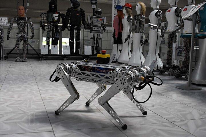 Tüm arazi şartlarına uygun çalışabilen robot, insan için tehlikeli alanlarda kullanılmak üzere tasarlandı.