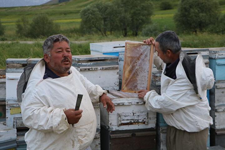 Hatayın Döryol ilçesi nüfusuna kayıtlı, 31 yıldır Yüksekova bölgesinde arıcılık yapan Osman Genç, Bu bölgenin bir evladı oldum. Yüksekova sahip olduğu zengin florasıyla arıcılar için ekmek kapısı. Türkiyenin en kaliteli balı bu bölgelerde elde ediliyor. Bölge halkının misafirperverliği ise bizi bu bölgeye bağlıyor dedi.