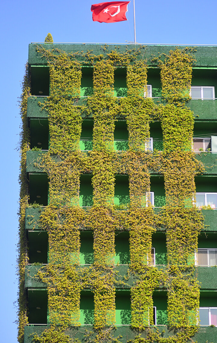 Sarmaşıkların sardığı 10 katlı bina, huzur veriyor