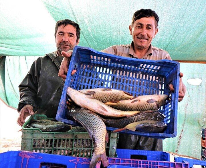 """Manisa'daki barajlardan çıkarılan balıkları Bursa'daki lokantalara sattığını belirten Ahmet Yılmazoğlu, """"Bizim göllerde balık azaldığı için Manisa'dan balık almaya geldim. Manisa'nın balığı Bursa'da çok seviliyor. Buradan sazan ve yayın balığı alıyorum. Bursa'da lokantalara veriyoruz"""" diye konuştu."""