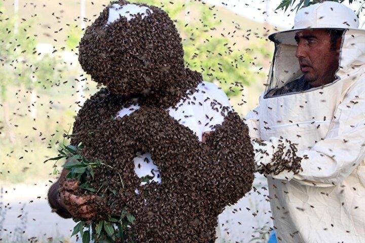 Normal günlük kıyafetleriyle binlerce arıyı üzerine çeken Semonun vücudu tümüyle arılarla kaplandı.