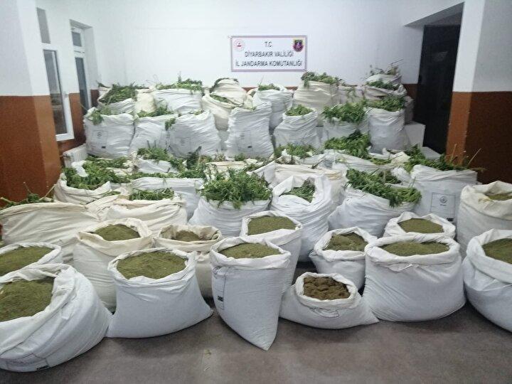 Ele geçirilen esrar muhafaza altına alınırken, kenevir bitkileri numune alınmasının ardından diğer malzemeler ile birlikte yerinde imha edildi.