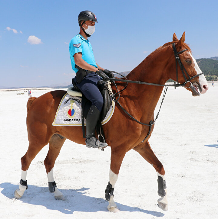 Atlı jandarma timi eylül ayı sonunda görevini tamamlayarak Nevşehir Jandarma At ve Köpek Eğitim Merkezi Komutanlığına dönecek.