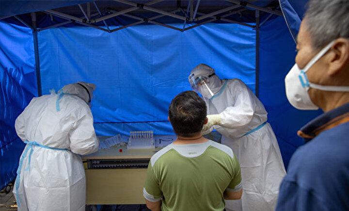 Son grip pandemisi olan domuz gribi 2009da Meksikada ortaya çıkmıştı. Çok sayıda insanın hastalanmasına ve ölmesine sebep olan bu salgın da dünyada büyük korku yaratmıştı.