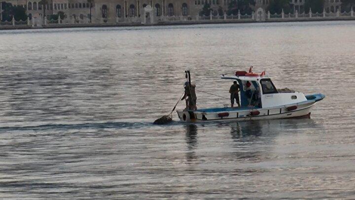 Üsküdar Paşa Limanı Caddesi Sahilinde denizde kaçak midye avcılığı yapıldığına dair bir ihbarı değerlendiren polis kaçak midye avcılığı yapan 4 kişiyi suçüstü yakaladı.