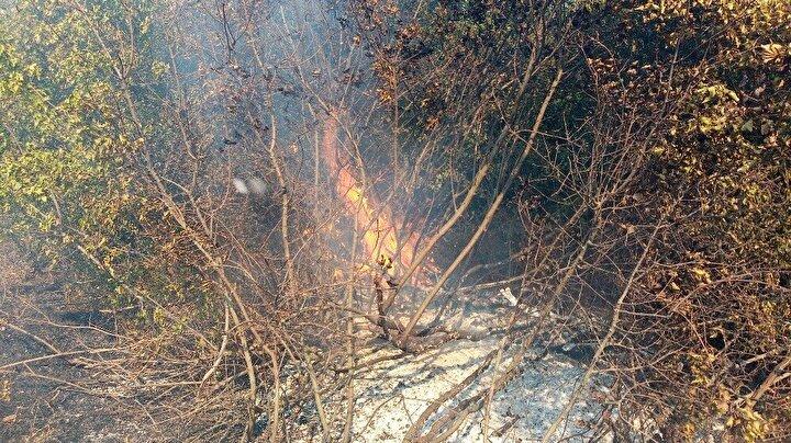 Civardaki köylüler de yangını engellemek için traktörleriyle seferber oldu.
