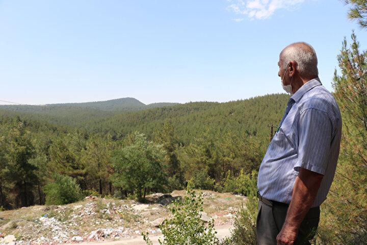 Boyabat ilçesi Akyörük köyü Azak Deresi mevkiindeki 3 bin 590 dekar çorak arazi için 1980 yılında Orman Genel Müdürlüğünce planlı ağaçlandırma çalışması başlatıldı. 5 yıl süren çalışma ile bölgeye 799 bin kızılçam fidanı dikilerek bakımı yapıldı.