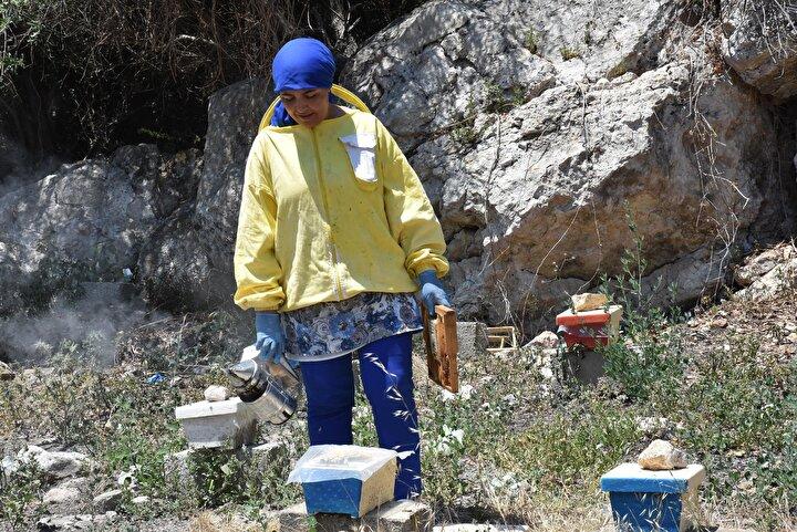 Türkiyenin her yerine gönderim yapıyoruz. Ege arısına Karadenizden tutun Güneydoğu Anadolu Bölgesine kadar her yerden talep var. Kraliçe arılarımızı özel kutularına koyduktan sonra kargo aracılığıyla hızlı bir şekilde müşterilerimize ulaştırıyoruz. Bu işin en güzel tarafı müşterilerimizden güzel dönüşler almak kesinlikle. Birçok müşterimiz arılarının oğula kaçması, kraliçenin yabancılaması gibi birçok riski bizim arımız sayesinde defetti...