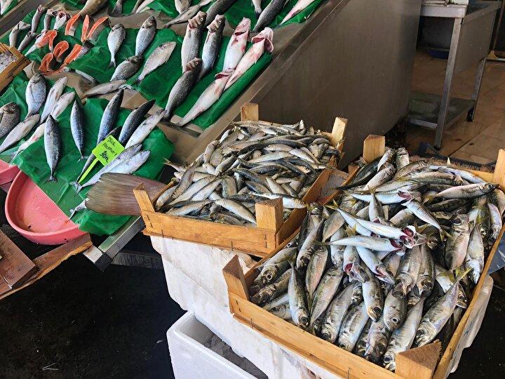 15 Nisan'da başlayan av yasağının dün gece itibariyle sona ermesiyle birlikte tezgahlar dolmaya başladı. Tarihi Kumkapı Balıkçılar Çarşı'nda hareketlilik yaşanırken, en çok satılan balık palamut oldu.