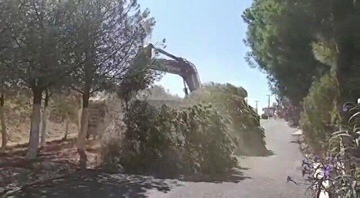 Mahalle halkının tepkisine rağmen ağaçlar sökülüp kamyonlara yüklenerek, bölgeden götürüldü.