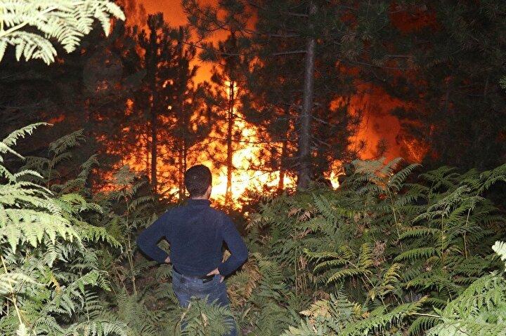 Ekiplerin bölgede soğutma çalışmaları devam ederken, yaşanan orman yangınında yaklaşık 20 dönümlük alan zarar gördü. Yangının çıkış nedeniyle ilgili soruşturma başlatıldı.