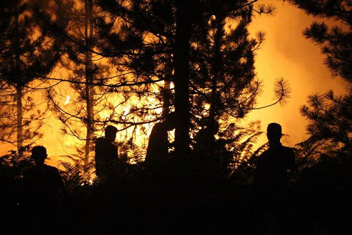 Yaklaşık 2 saat süren çalışmanın ardından yangın söndürüldü.