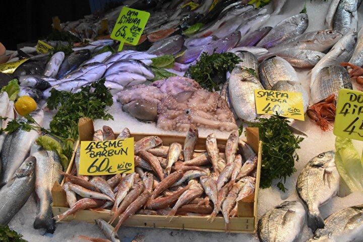 İzmir Gıda Mühendisleri Odası Başkanı Uğur Toprak, satın alınan taze balıkların en kısa sürede buzdolabına koyulması gerektiğini belirterek, Yaz aylarında balık tüketirken dikkat edilmeli. Özellikle hamsi, sardalye gibi küçük balıklarda hava sıcaklıkları nedeniyle oluşan histamin nedeniyle, tüketildiğinde zehirlenmeler görülebilir. O nedenle balıkları fazla sıcak havayla temas ettirmeden, hızlı bir şekilde eve götürüp dolaba koymak gerekiyor. 2006 yılında yürürlüğe giren yönetmeliğe göre, sergi veya taşıma amaçlı olarak tahta kasaların kullanımı yasak. Fakat ne yazık ki, açılışlarda bile bunların kullanımı görüyoruz. Balıkların ya paslanmaz çelikten yapılmış ürünlere ya da plastikten yapılmış kaplara koyulması gerekiyor. Tahta ıslanıyor ve mikroorganizmaların gelişimini kolaylaştırıyor diye konuştu.