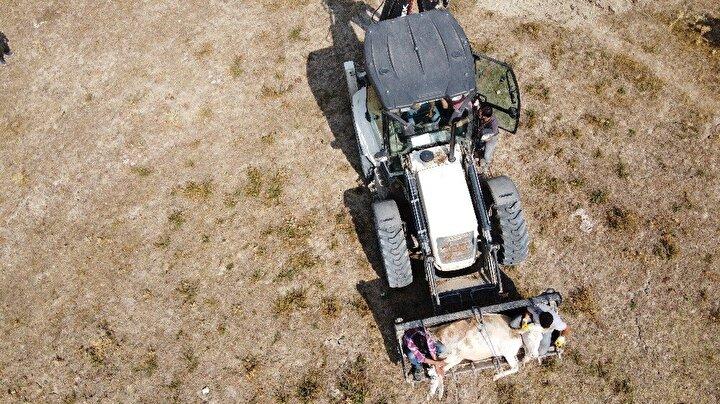 AFAD ekibi, ineği kendilerinin çıkaramayacağını belirterek, İl Özel İdaresi ile iletişime geçti.