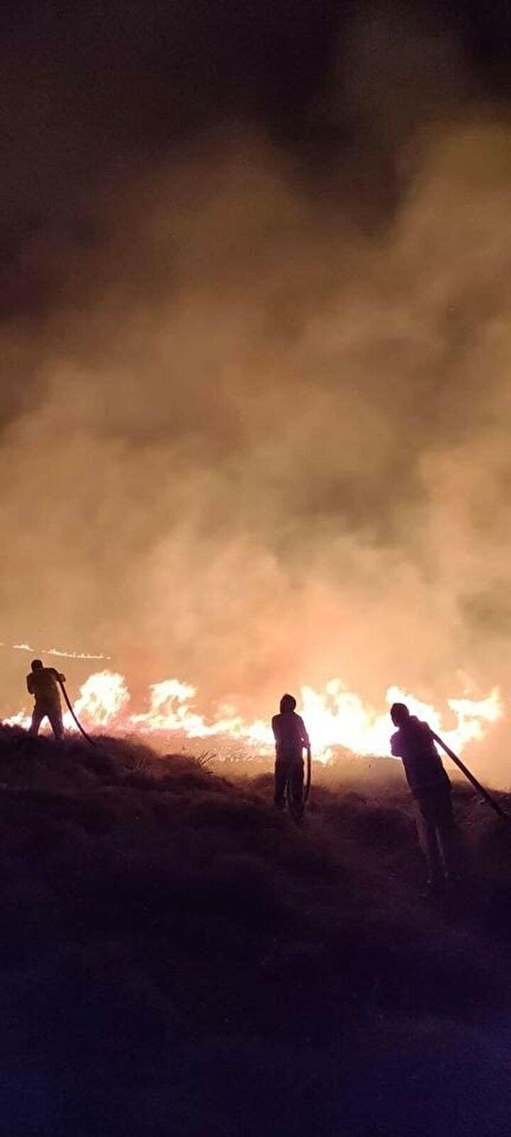 Türkiyenin en büyük adası unvanına sahip olan Çanakkalenin Gökçeada ilçesinde, Yıldızkoy ile Yeni Bademli köyleri arasında kalan meralık alanda saat 23.00 sıralarında bilinmeyen nedenle  yangın çıktı.