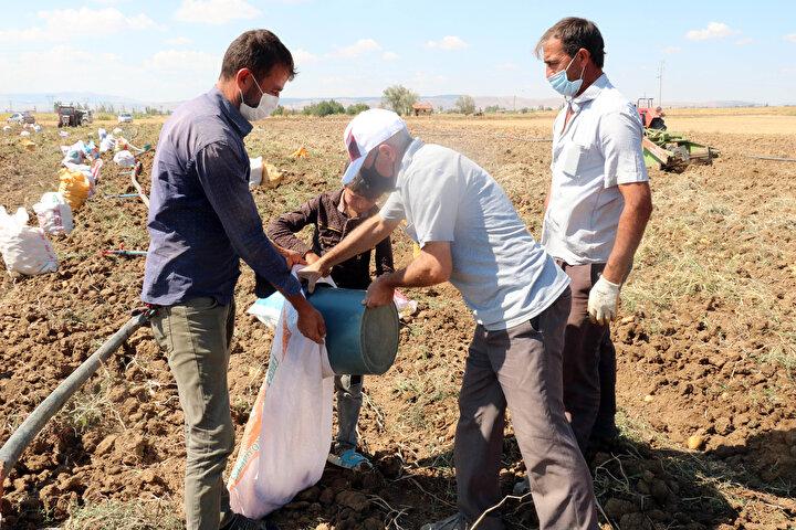 Bunun yanında patates üretiminin yeterli olduğu ve ülke genelindeki patates ihtiyacının rahatlıkla karşılanabileceği de vurgulandı.