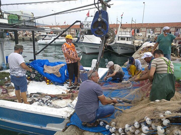 """Şarköy Su Ürünleri Kooperatifi Başkanı Yaşar Karayel, devam eden av sezonunun bereketli geçtiğini belirterek, Son günlerdeki olumlu hava koşulları da balık avına yansıdı. Tezgahlarda şu an 6-7 çeşit balık türü var. Palamut ve karidesteki bolluk fiyatlara da yansıdı. Palamudun tanesi iriliğine göre 7,5 ile 10 TL arasında değişiyor. Bu sıralar sofralarda da çokça tercih ediliyor"""" dedi."""