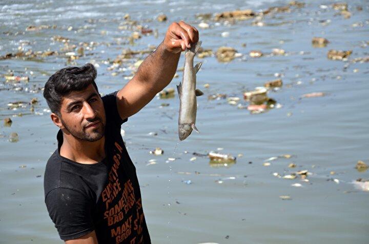 Nehirdeki ölü balıkları, vatandaşların yemek için evlerine götürdüğünü belirten Çatbaşı köyü Muhtarı Nasır Balkaya, Tonlarca balık toplandı. Köylülerde ondan zehirlenebilir. Balıkların hepsi zehirlenmiş, ölmüştü ve birçok köylü de bu balıkları yemiştir diye konuştu.