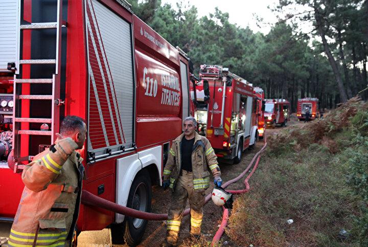 Çok sayıda ağacın yandığı yangına müdahale için çevre ilçelerden çok sayıda itfaiye ekibi sevk edildi.