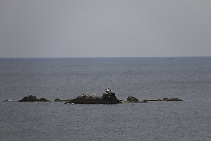 Issız bir görünümü olan adada şu an için martılar ve karabataklar bulunuyor. Ada ise drone ile havadan görüntülendi. Görüntülerde etrafı kayalıklarla çevrili olan adanın zemin kısmının oldukça bozuk olduğu görüldü.