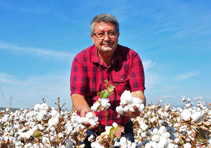 Türkiyenin tarımsal üretiminde önemli paya sahip olan Manisada, beyaz altın olarak nitelendirilen pamuğun hasadına başlandı.