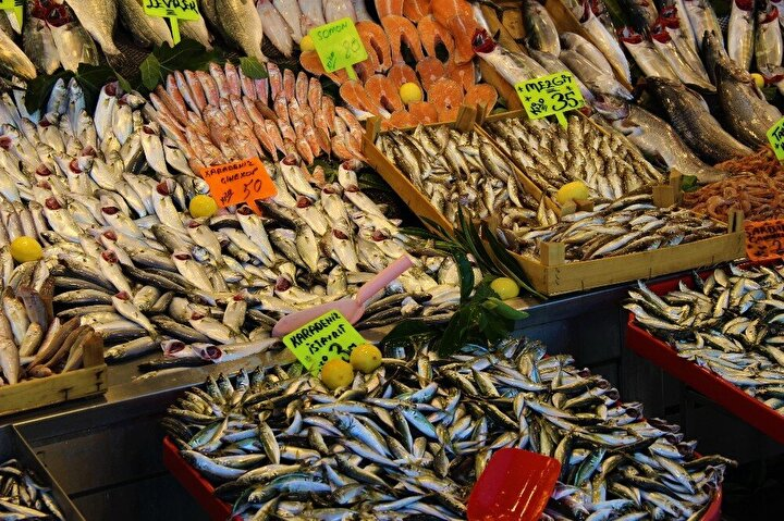 Karadeniz hamsisi çıkmaması ve Marmara hamsisinin de az olması nedeniyle balık pazarlarında hamsinin kilosu 40 TL'nin altına inmiyor. Özellikle hamsi almak için pazara gelen vatandaşlar, fiyatları görünce şaşkınlığını gizleyemiyor. Etiketlerde 40 TL'yi görenler, hamsi almaktan vazgeçiyor. Balıkçılar ise 15 gün sonra hamsinin bollaşmasını ve genel olarak tezgahtaki fiyatların düşmesini bekliyor.