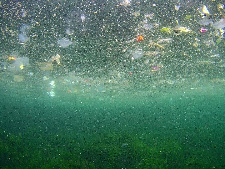 Sahile gezmek için gelen vatandaşlar da çöplerin oluşturduğu kirliliğe ve kötü kokuya isyan etti.