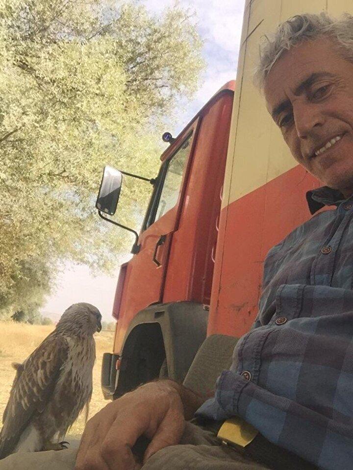 Yaban hayatını korumak ve hayvanların doğal yaşamlarına adapte olmasını sağlamak için şahinleri bıraktığını anlatan Kemal Çelik, Ben yaz boyunca burada olduğum için 5 aydır şahinlerle birlikteyim. Ben bu şahinlerin doğal yaşam alanlarına dönmelerini istedim ama gitmediler. Sürekli burada birlikte ve bir dostluk içindeyiz diye konuştu.