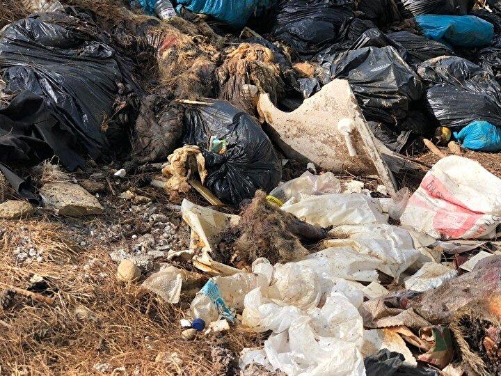 Yeniköy Muhtarı Abdullah Zeki Kavuklu, Yeniköy Kepez mevkiindeki ormanlık alanda poşetler içerisinde atılan atıkların köpek ve yabani hayvanlar tarafından parçalandığını söyledi.